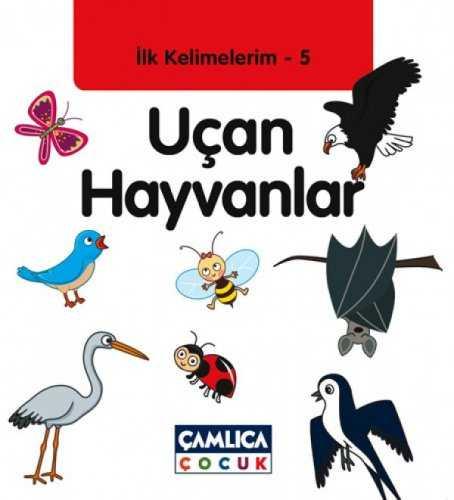 Ilk Kelimelerim 5 Uçan Hayvanlar Okul öncesi çamlica çocuk Yayinlari